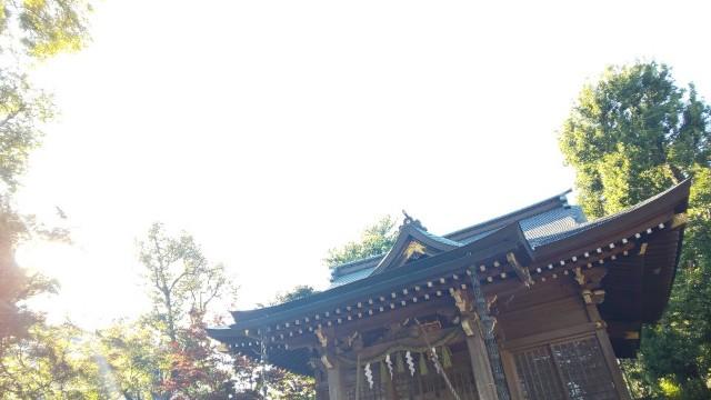 f:id:hinoki_kaonashi:20201125142711j:plain
