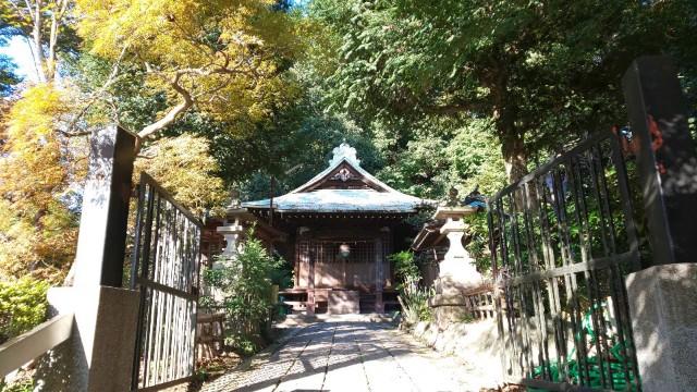 f:id:hinoki_kaonashi:20201125144525j:plain