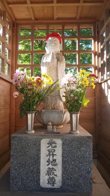 f:id:hinoki_kaonashi:20201125144718j:plain