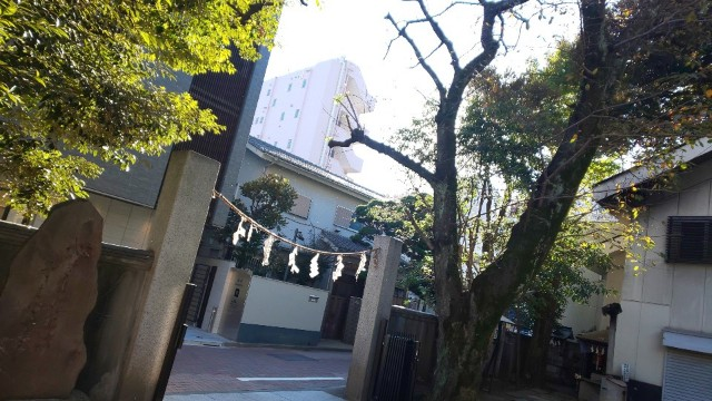 f:id:hinoki_kaonashi:20201129155349j:plain