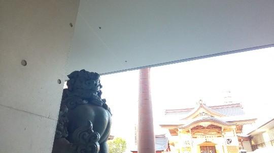 f:id:hinoki_kaonashi:20201206101708j:plain