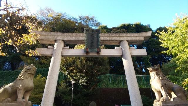 f:id:hinoki_kaonashi:20201212161433j:plain