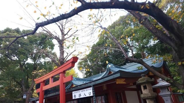 f:id:hinoki_kaonashi:20201212161935j:plain