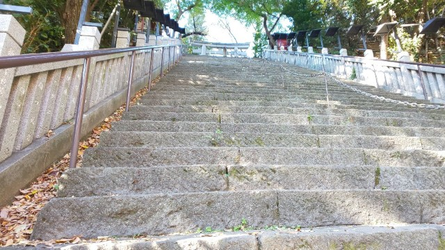 f:id:hinoki_kaonashi:20210104210238j:plain