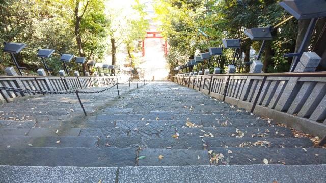 f:id:hinoki_kaonashi:20210104210803j:plain