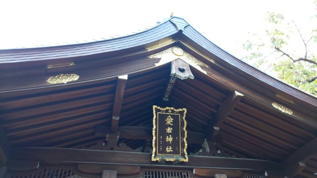 f:id:hinoki_kaonashi:20210104212719j:plain