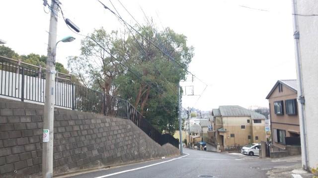 f:id:hinoki_kaonashi:20210224154753j:plain