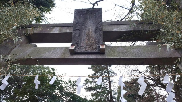 f:id:hinoki_kaonashi:20210224161008j:plain