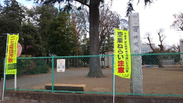 f:id:hinoki_kaonashi:20210224162202j:plain