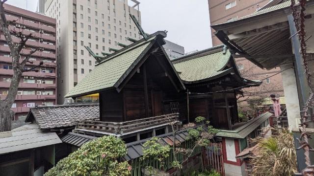 f:id:hinoki_kaonashi:20210304165158j:plain