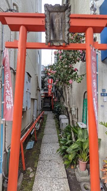 f:id:hinoki_kaonashi:20210307153743j:plain