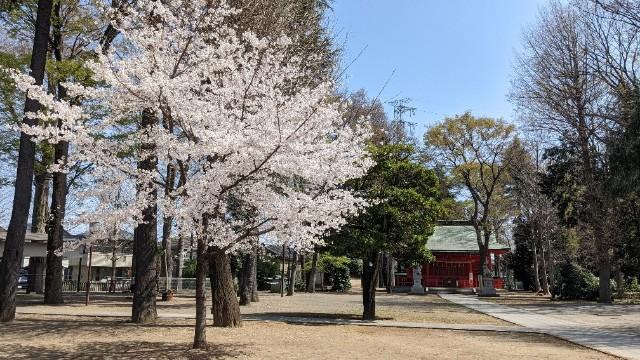 f:id:hinoki_kaonashi:20210330164123j:plain