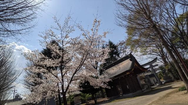 f:id:hinoki_kaonashi:20210331121854j:plain