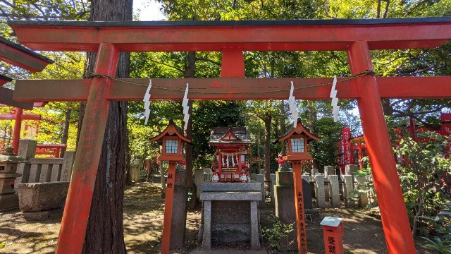 f:id:hinoki_kaonashi:20210410153624j:plain
