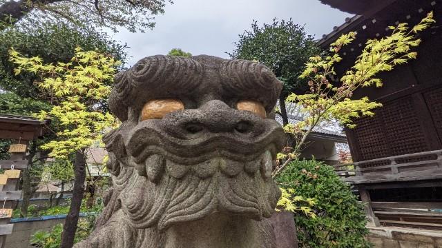 f:id:hinoki_kaonashi:20210414154739j:plain