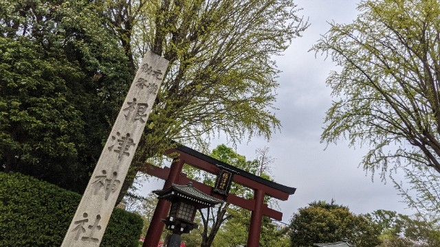 f:id:hinoki_kaonashi:20210429225823j:plain