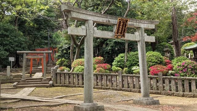 f:id:hinoki_kaonashi:20210430151534j:plain