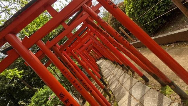 f:id:hinoki_kaonashi:20210430151726j:plain