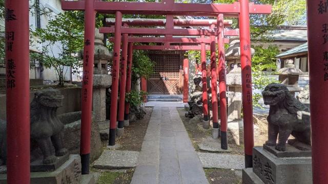 f:id:hinoki_kaonashi:20210510224332j:plain