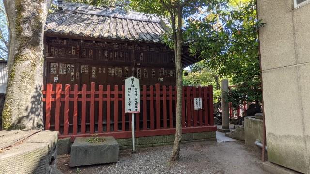f:id:hinoki_kaonashi:20210510230322j:plain