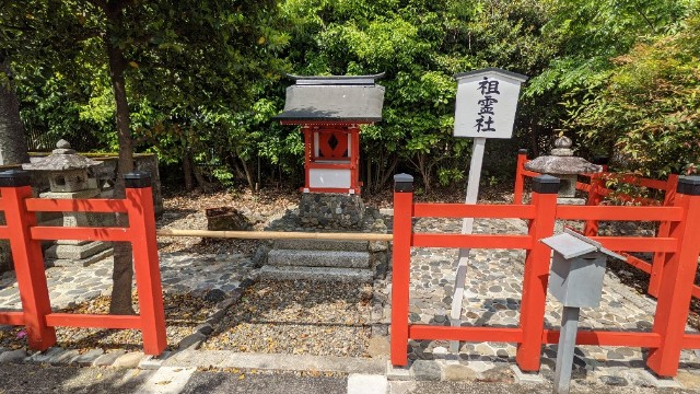 f:id:hinoki_kaonashi:20210514181729j:plain