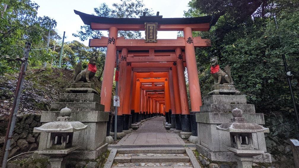 f:id:hinoki_kaonashi:20210527164027j:plain