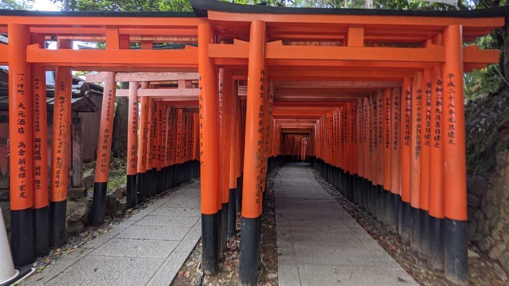 f:id:hinoki_kaonashi:20210527164111j:plain