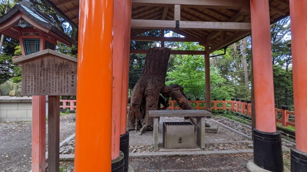 f:id:hinoki_kaonashi:20210530195951j:plain