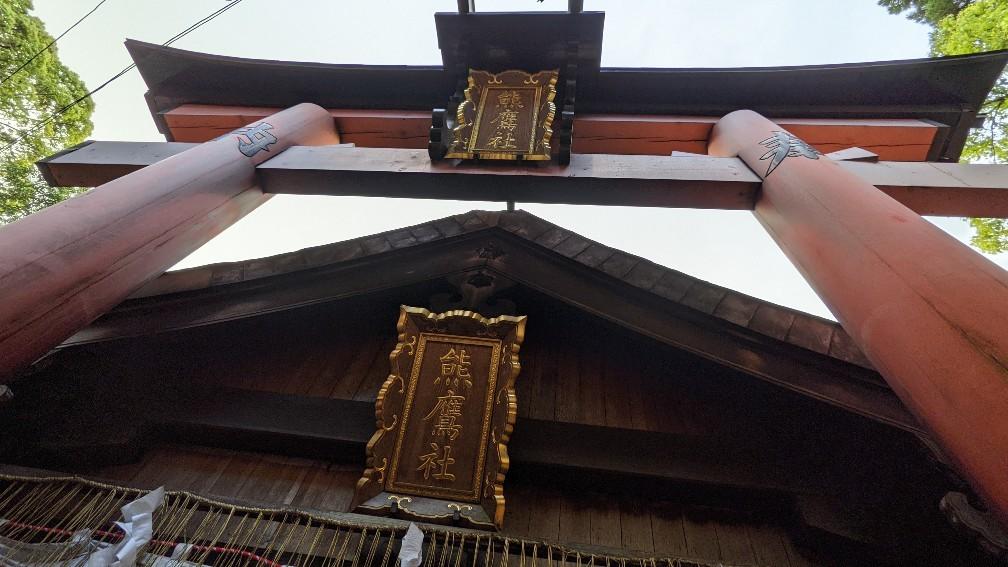 f:id:hinoki_kaonashi:20210530202949j:plain