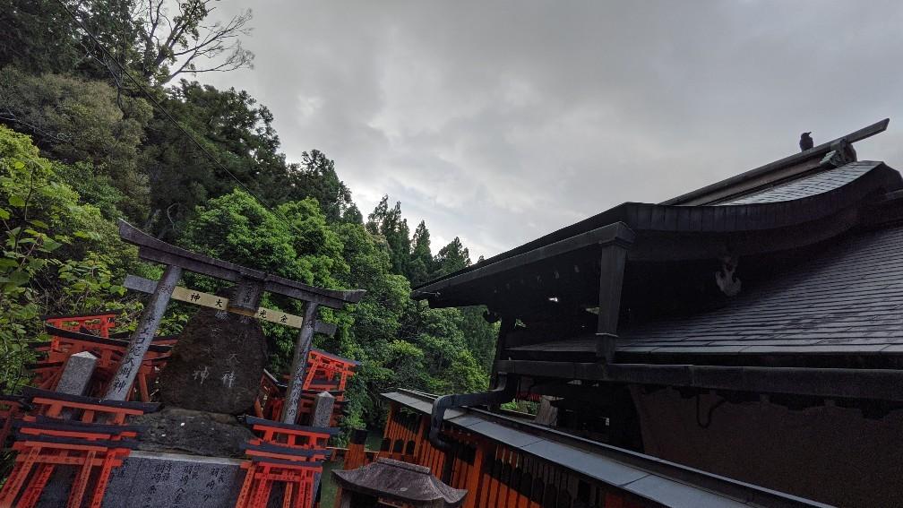 f:id:hinoki_kaonashi:20210530204237j:plain