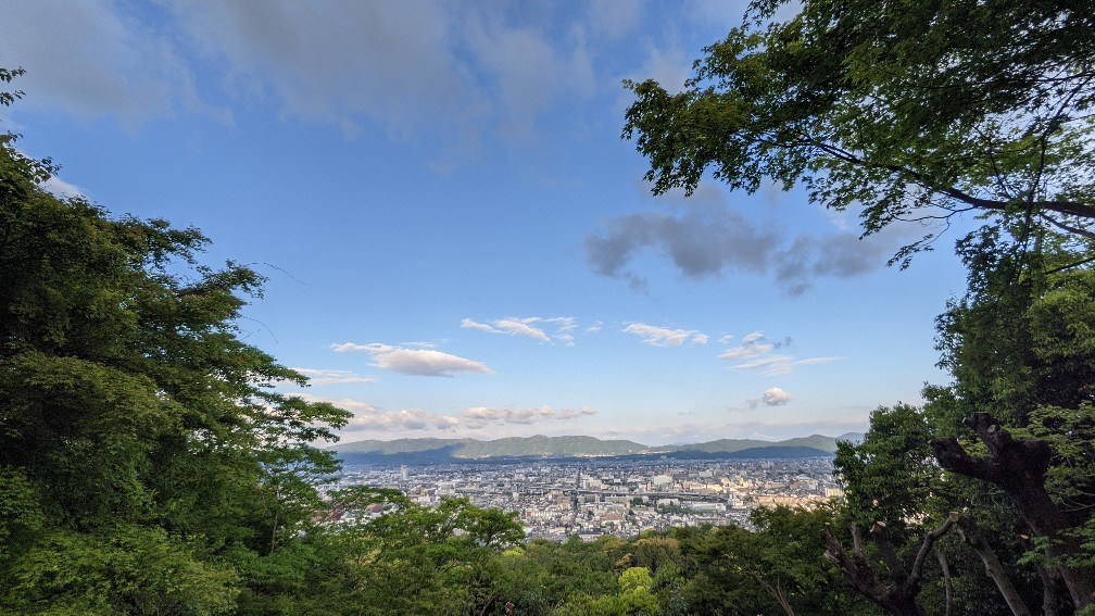 f:id:hinoki_kaonashi:20210530211447j:plain