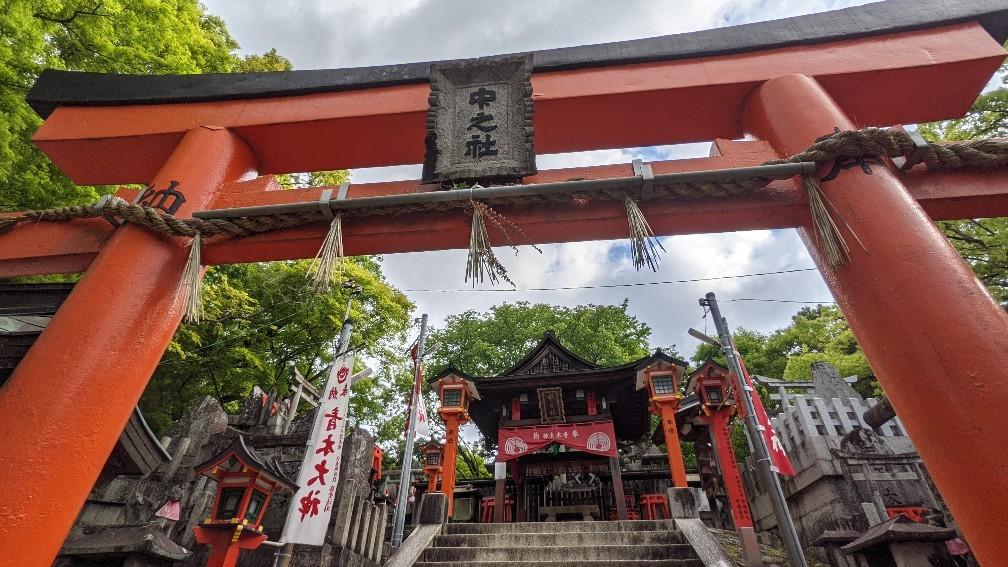 f:id:hinoki_kaonashi:20210602155334j:plain