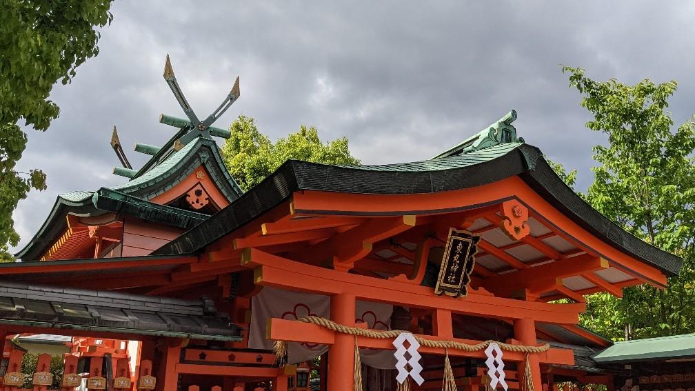 f:id:hinoki_kaonashi:20210602181016j:plain