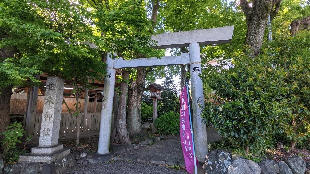 f:id:hinoki_kaonashi:20210603152043j:plain