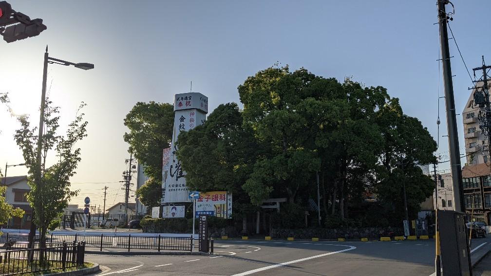 f:id:hinoki_kaonashi:20210603152115j:plain