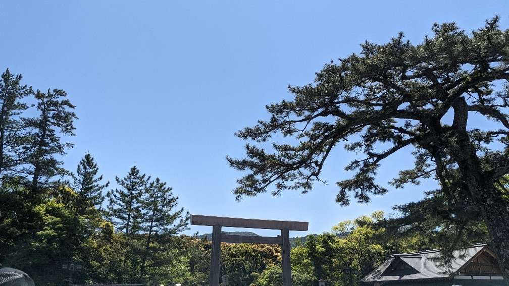 f:id:hinoki_kaonashi:20210626210453j:plain