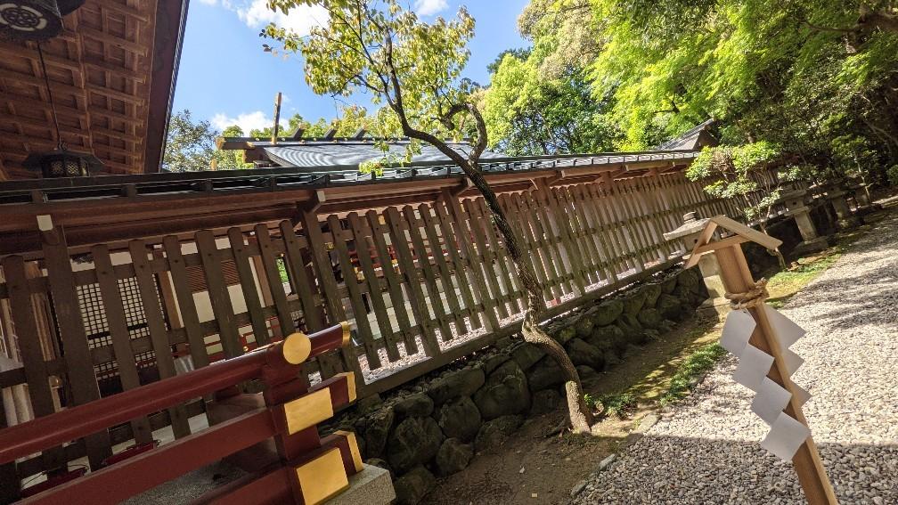 f:id:hinoki_kaonashi:20210715204657j:plain