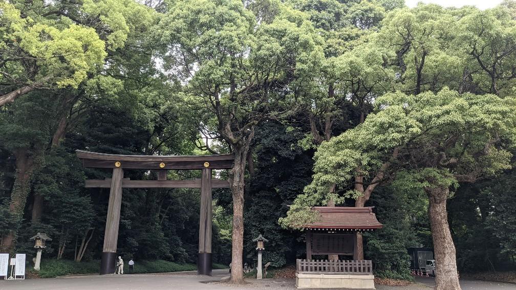 f:id:hinoki_kaonashi:20210907161521j:plain