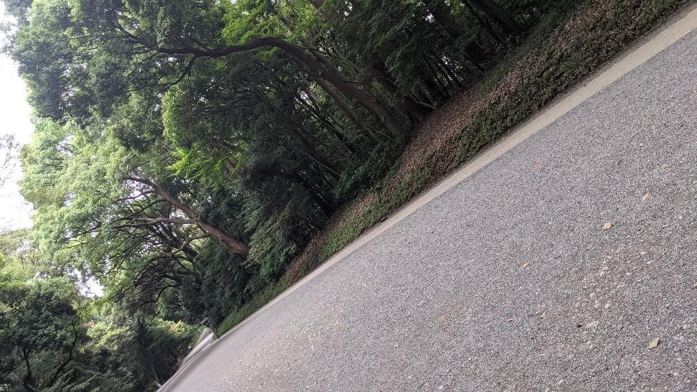 f:id:hinoki_kaonashi:20210907162104j:plain