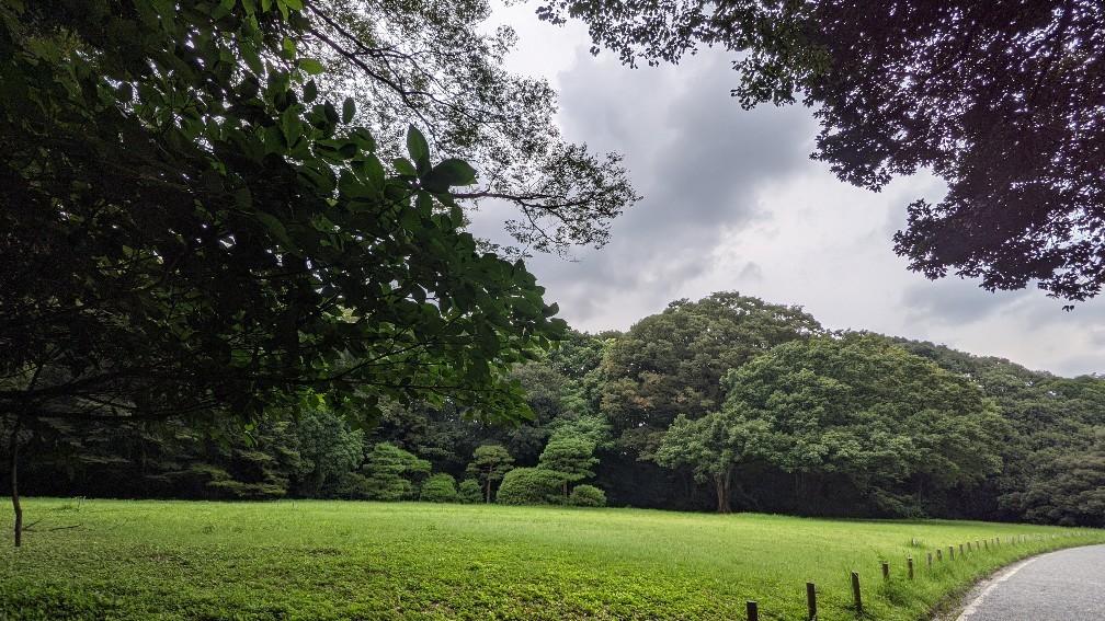 f:id:hinoki_kaonashi:20210907172104j:plain