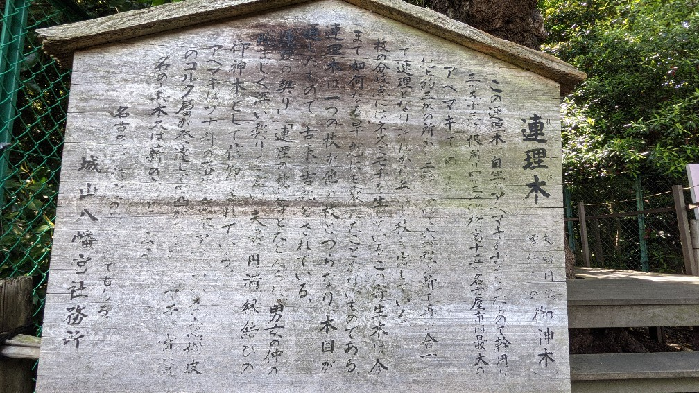 f:id:hinoki_kaonashi:20210928170759j:plain