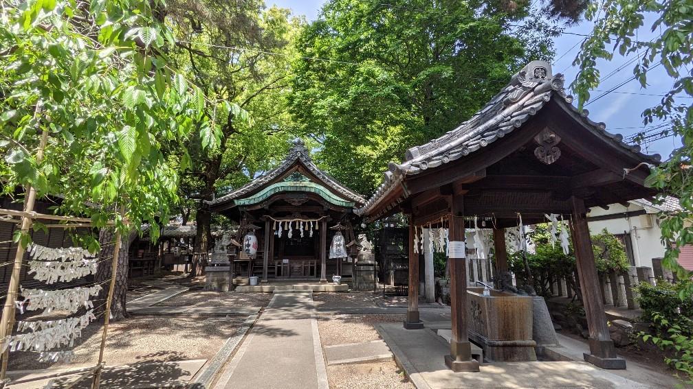 f:id:hinoki_kaonashi:20211003181827j:plain