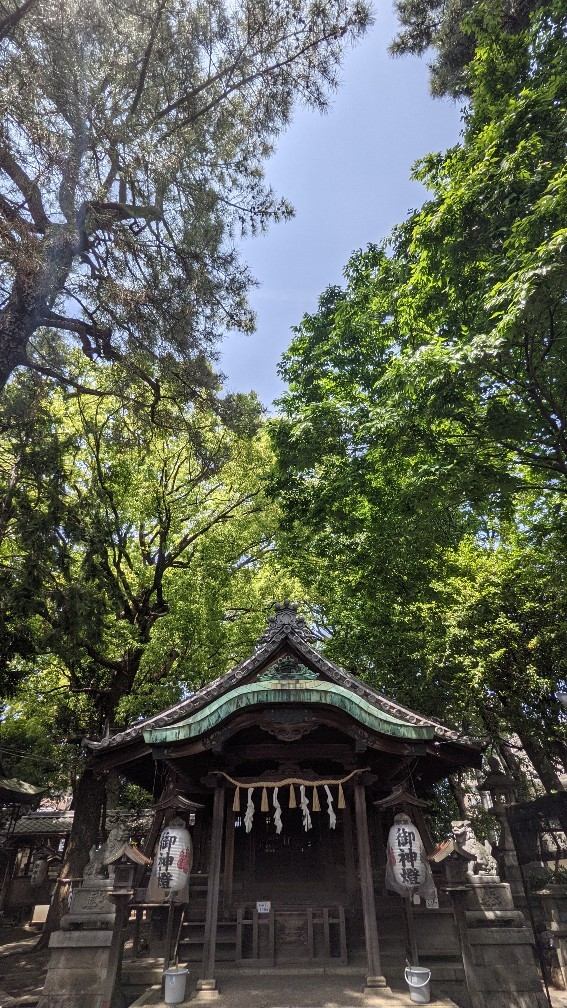 f:id:hinoki_kaonashi:20211003193827j:plain