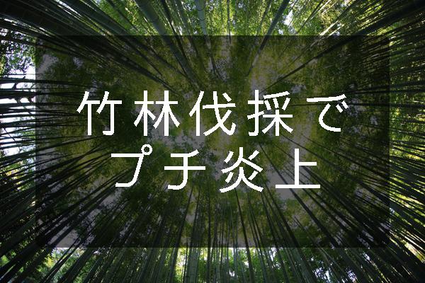 f:id:hinokichi:20170325144930j:plain