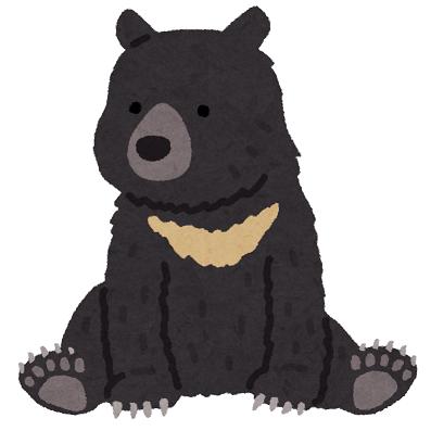 f:id:hinokinatsume:20180521233144p:plain