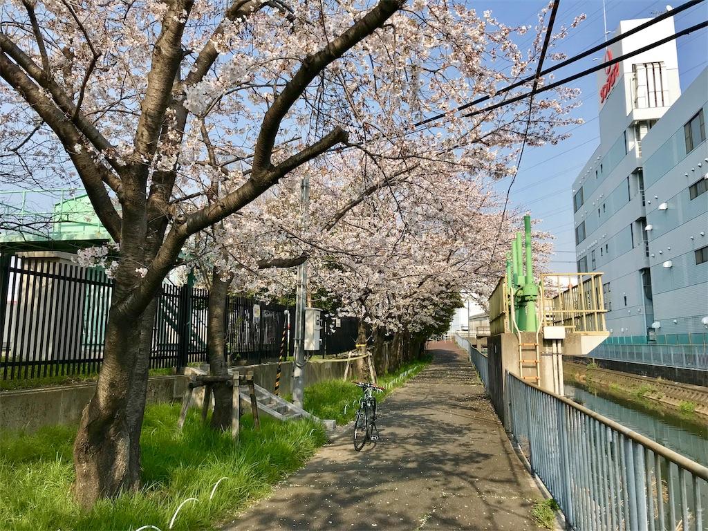 f:id:hinokinatsume:20190406175750j:image
