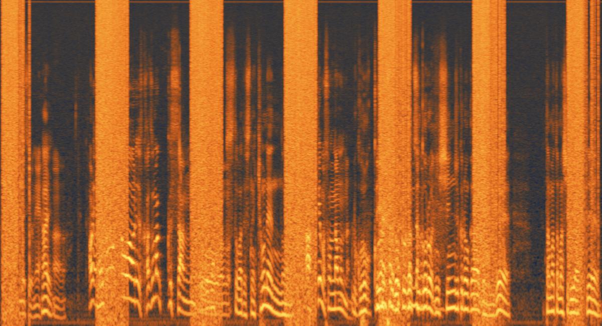 rx7スペクトログラムで見た極大ノイズ