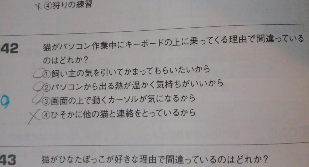 f:id:hira-kyoko:20170326175817j:plain