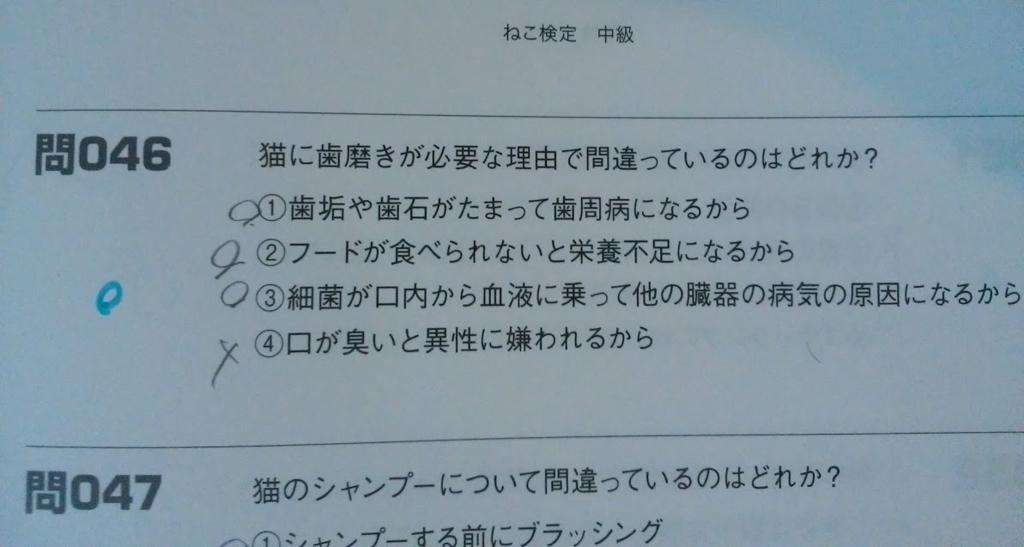 f:id:hira-kyoko:20170326175944j:plain