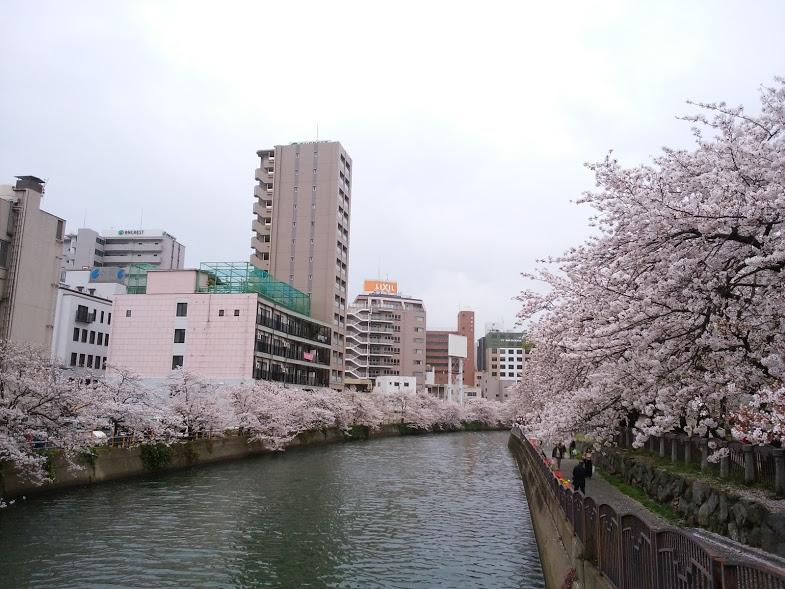 f:id:hira-kyoko:20170409180643j:plain